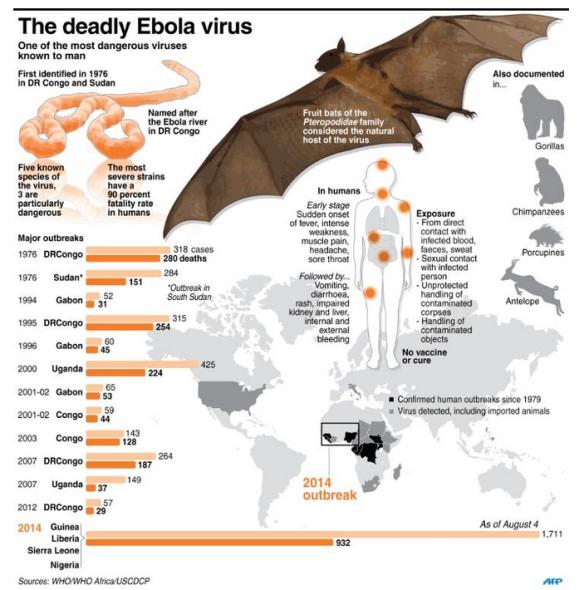 History of Ebola